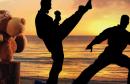 1115204__karate-kid-toy_p