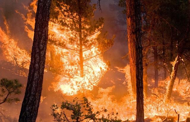incendie-640x411