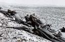معركة جبل العيدودي-الحامة000