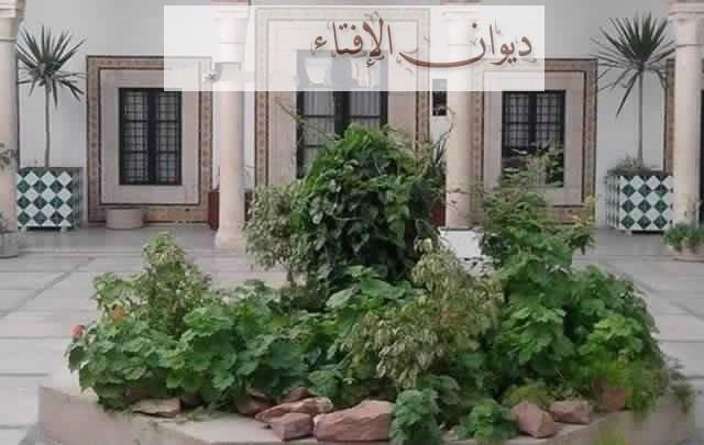 ديوان الافتاء-تونس