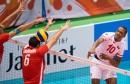 الكرة الطائرة - منتخب تونس