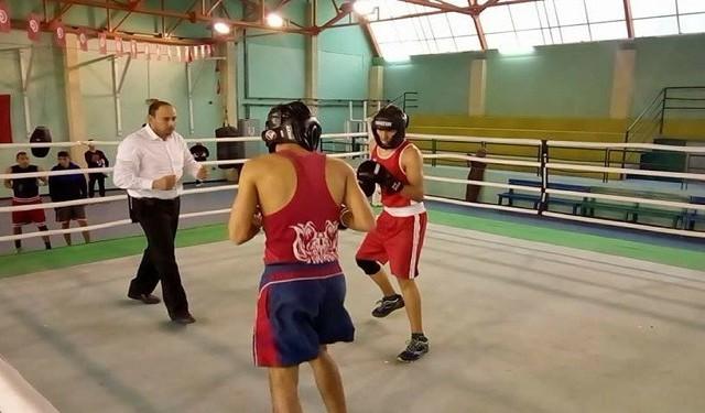 ملاكمة - تونس