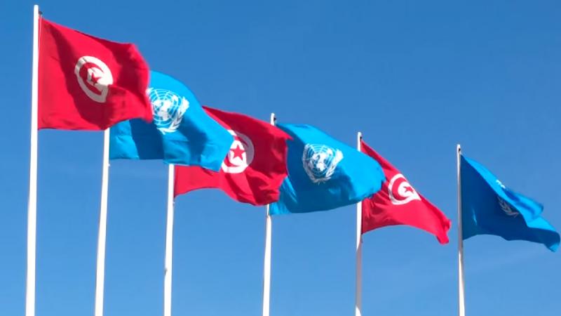 تونس - الامم المتحدة