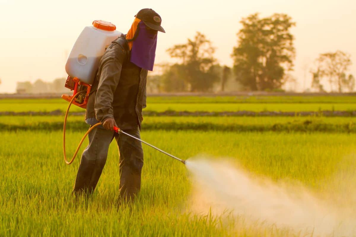 المبيدات-الزراعية