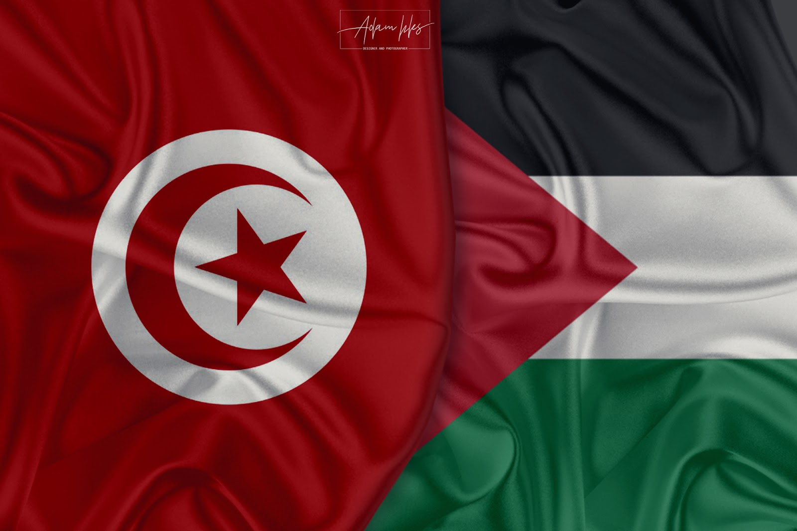 Tunisia and Palestine